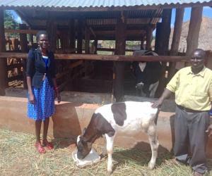 Alex.Dairy.Gulu