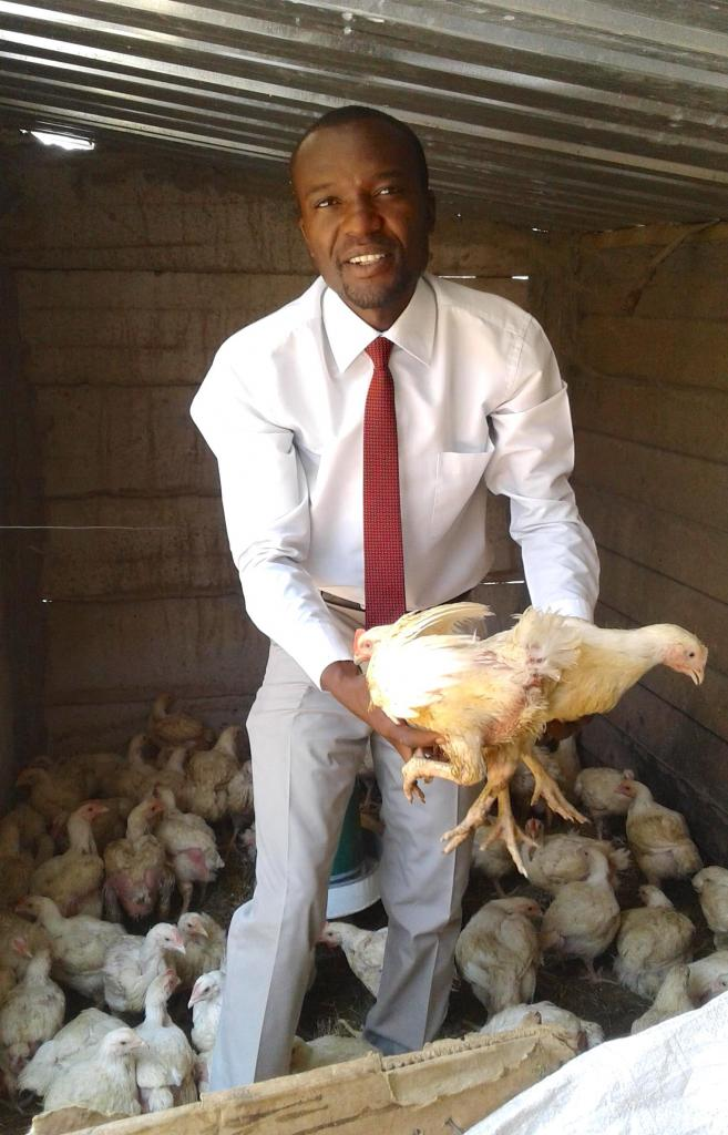 Innocent.Chicken.Zimbabwe