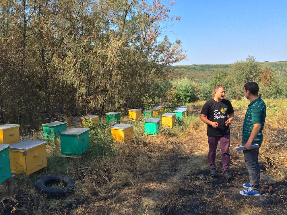 Consulting with Nicolai, a bee keeper in Moldova